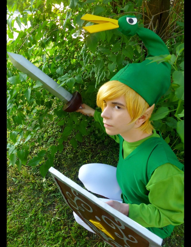 Minish cap links house for Housse zelda